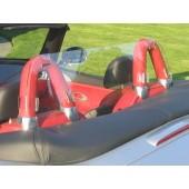 BMW Z8 Windscreen