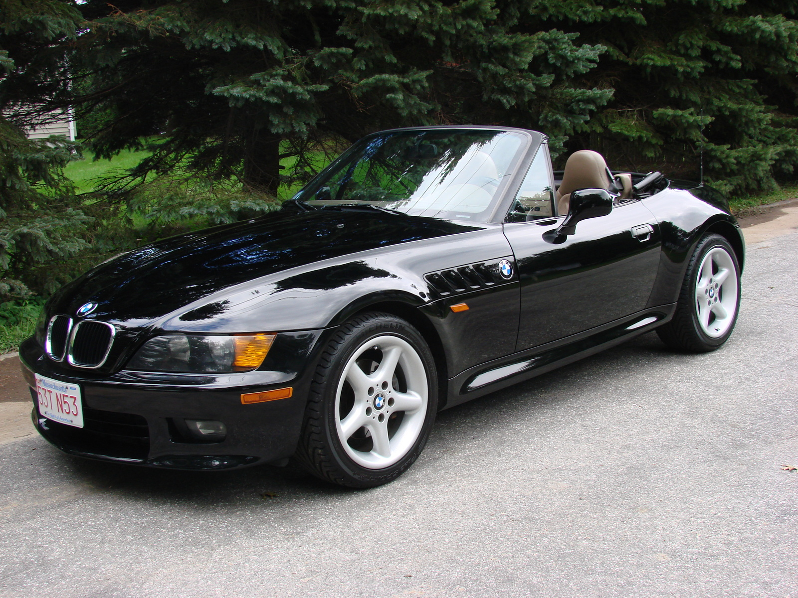 BMW Z3 NO Roll Hoops